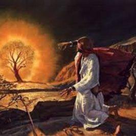 Mesjasz w Księdze Wyjścia cz. 1